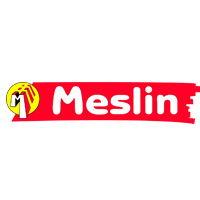 Etablissements MESLIN